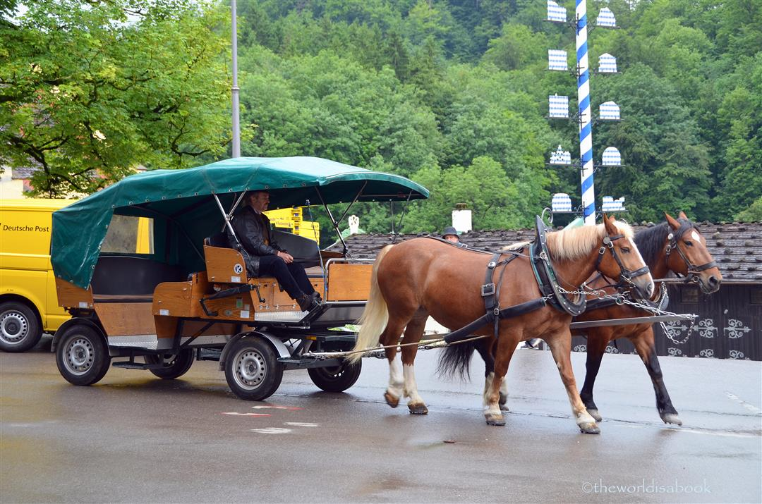 neuschwanstein-horse-carriage